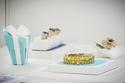 إفتتاح بوتيك Tiffany & Co الجديد في مول الإمارات في دبي