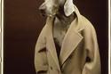ماكس مارا تعيد معطفها الشهير 101801