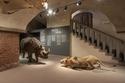 Museo Ferragamo room 1 2
