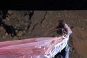 Adina Fohlin -مجموعة ماكوين للألبسة الجاهزة لخريف 2003