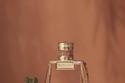 Chloé Nomade Absolu de Parfum بـ142 دولارا