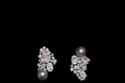أقراط قصيرة جميلة من مجوهرات Dior